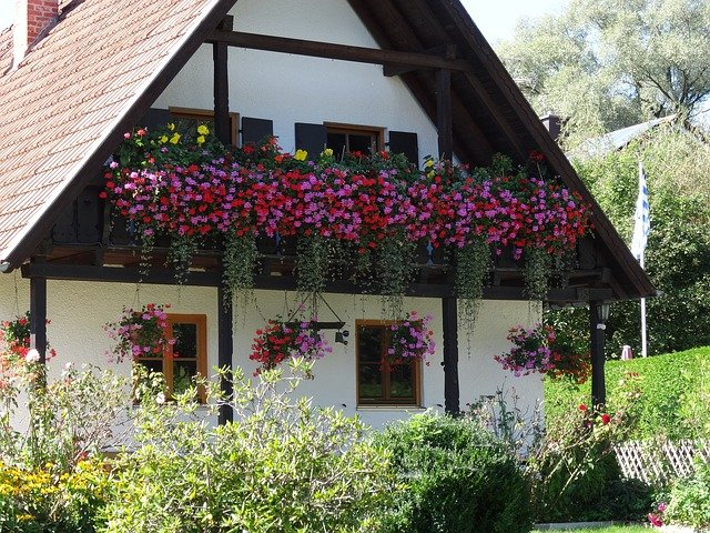 domov s květinami