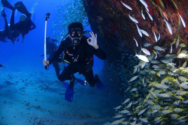potápěči u rybiček